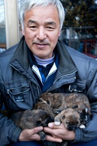 Matsumura Naoto the defiant farmer