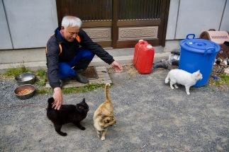 Trois chats viennent se frotter sur mes mollets. Leurs fourrures sont blanche, noire, ou commando. Shiro, Kuro ont été nommés selon leur couleur uniforme blanc et noir. Le troisième, un chat tricolore, porte le nom de Sabi qui indique un gris vert.